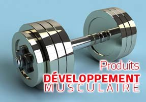developpement-musculaire